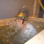 Крещение Господне: Крещенские купания